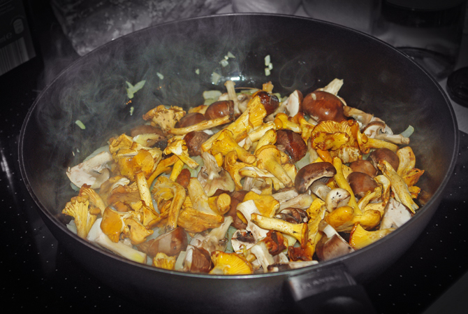 Risotto mit Pilzen