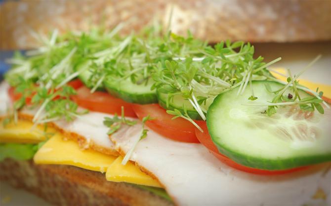 Gegrilltes Frühstücks-Sandwich